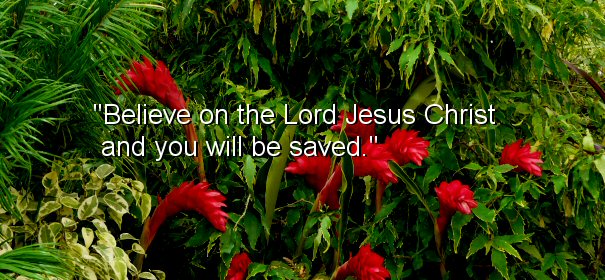 Image - Believe on the Lord Jesus Christ and you will be saved.
